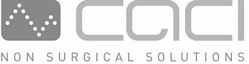 CACI System Logo