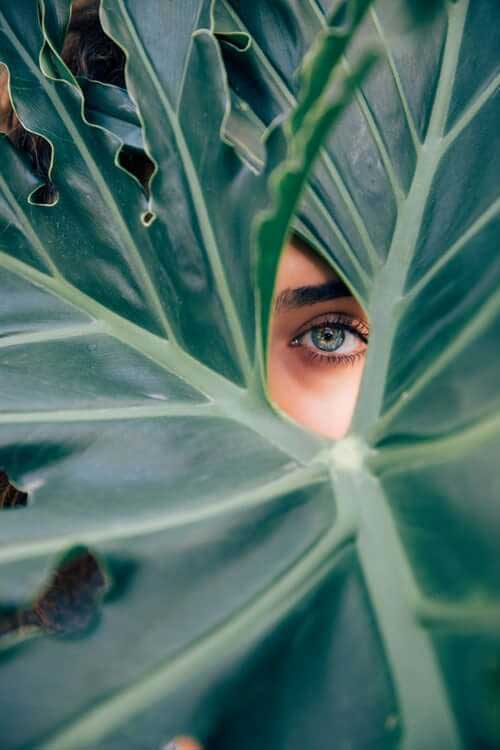 Woman looking through green leaves